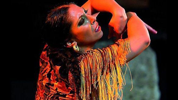 flamenco-rivesaltes-pyrenees-orientales